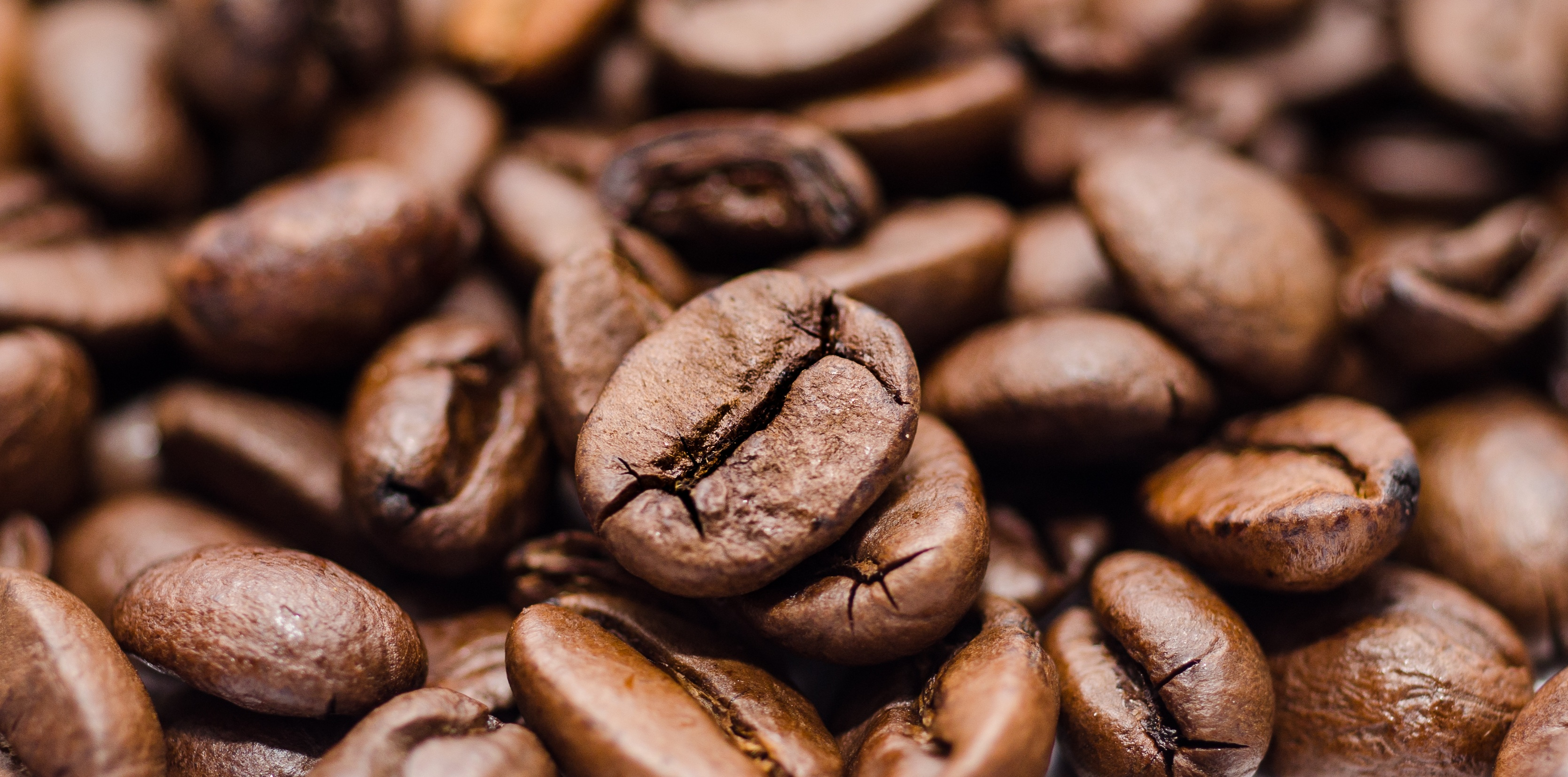 coffee-bean-drink-grind-591651